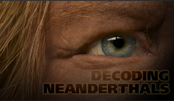 rethinking neanderthals There has long been debate among scientists regarding how homo sapiens and neanderthals compared in terms of their cognition and intelligence.