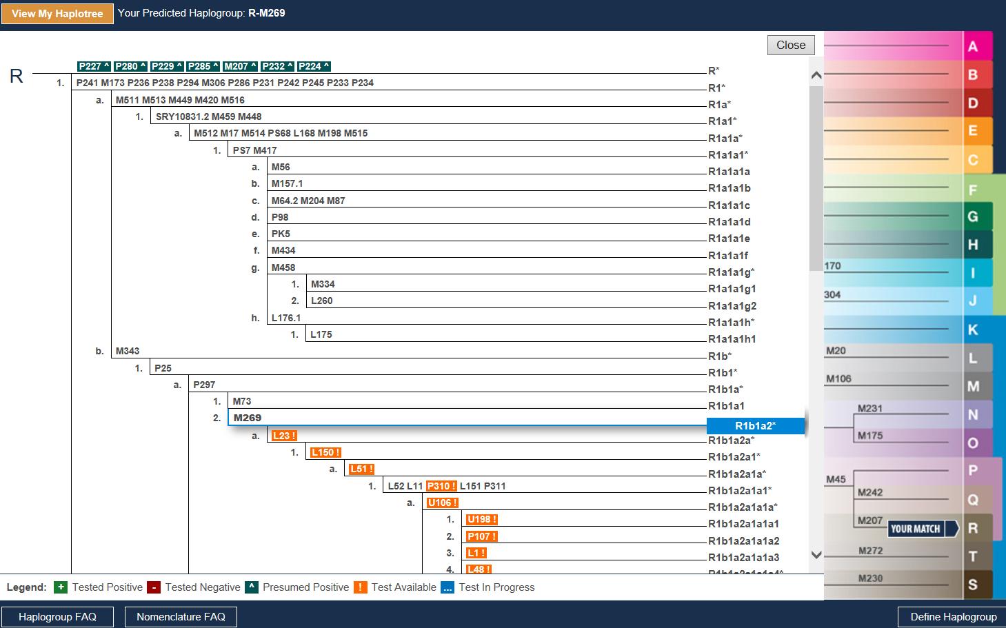 ancestry chart software