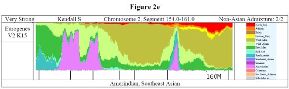 Payne graph 3