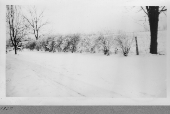 Ferverda 1937 storm