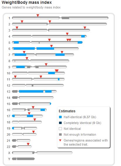 Sharing genomes 12
