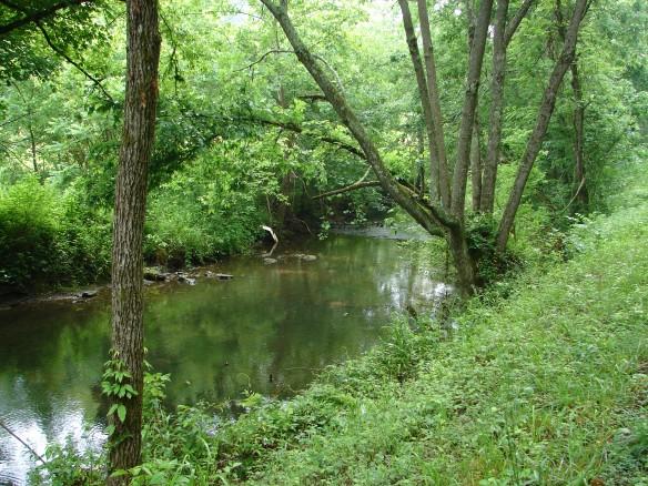 Dodson Creek 2
