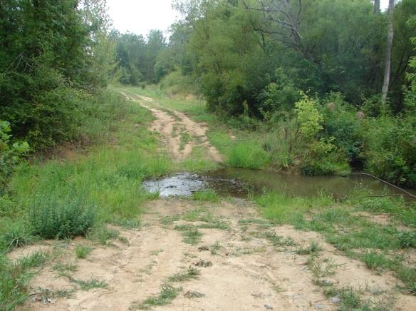 yellow bank creek