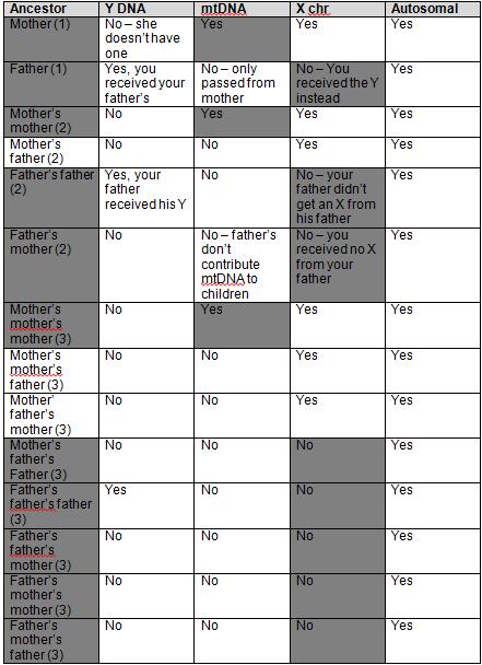 male x match ancestor elimination2
