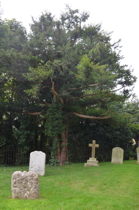 st nicholas ringwould churchyard