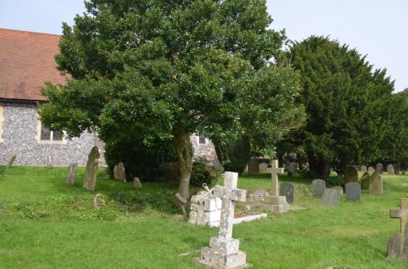 st nicholas ringwould churchyard2