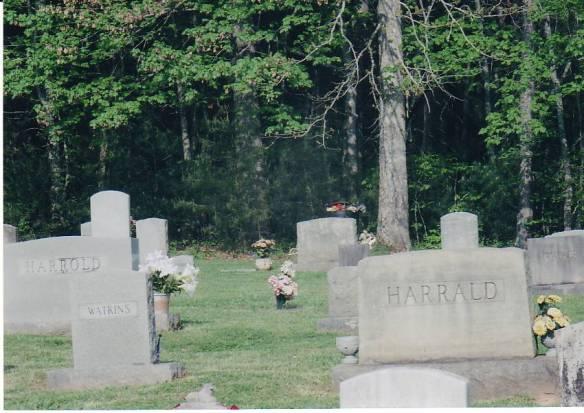 harrald cemetery wilkes county