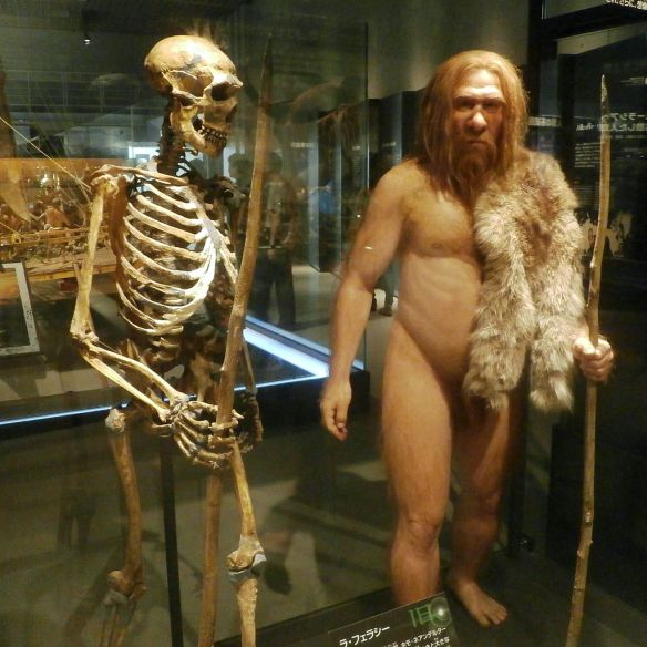 neanderthal reconstructed