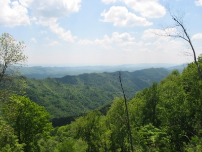 Black Mountain Harlan County
