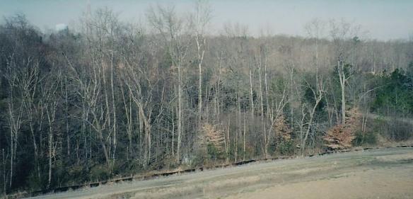 George Estes landfill 2
