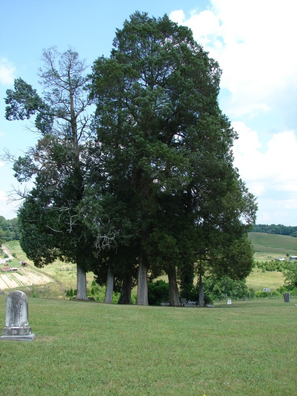 Carter's Station cemetery2
