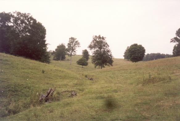 Elisha's land looking NW