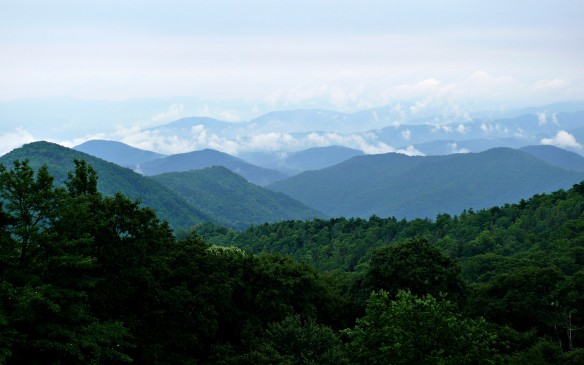 Wilkes County view