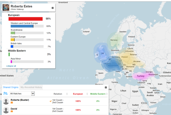 Ethnicity DNA matches