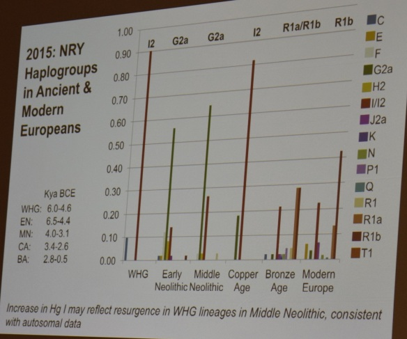 2015 ftdna hammer haplogroups