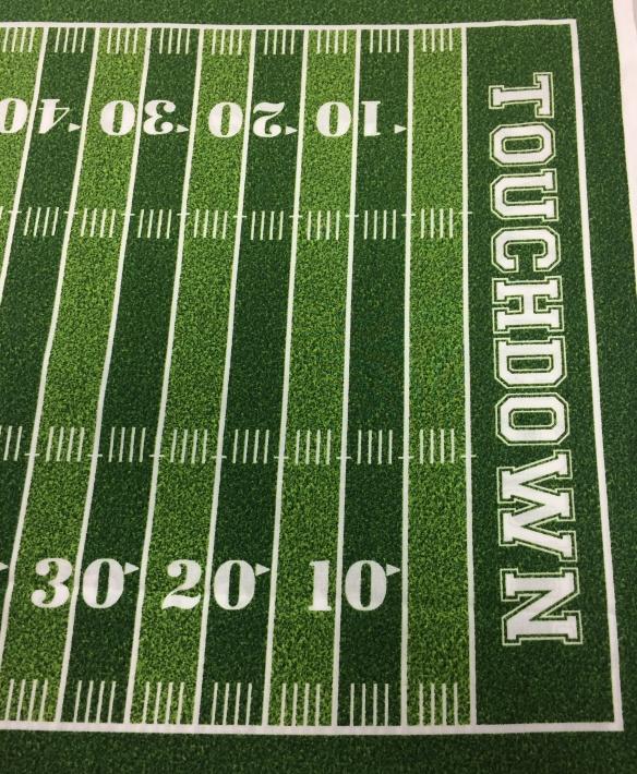 football fabric 2