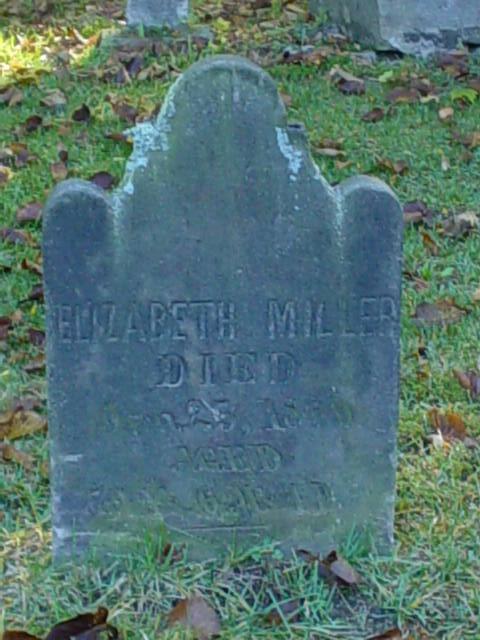 David Miller Elizabeth stone