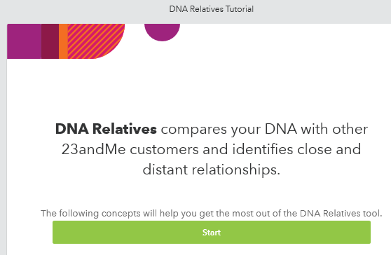 DNA family Tree Report, What should the contents of my report be?