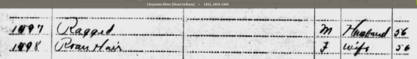 im-1896-census-ragged