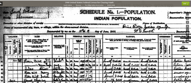 im-1900-census-chasing-hawk