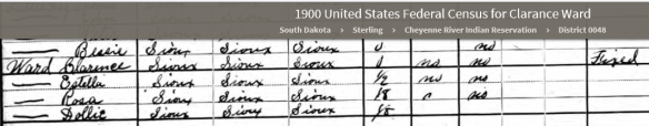 im-1900-census-ward-special