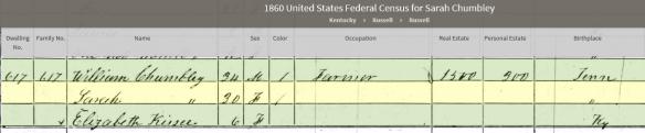 mary-1860-pulaski-census