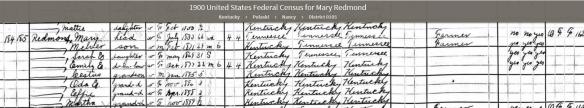 mary-1900-pulaski-census