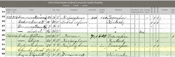 mary-pulaski-1870-census
