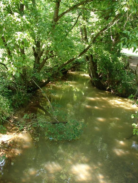 jane-gap-creek