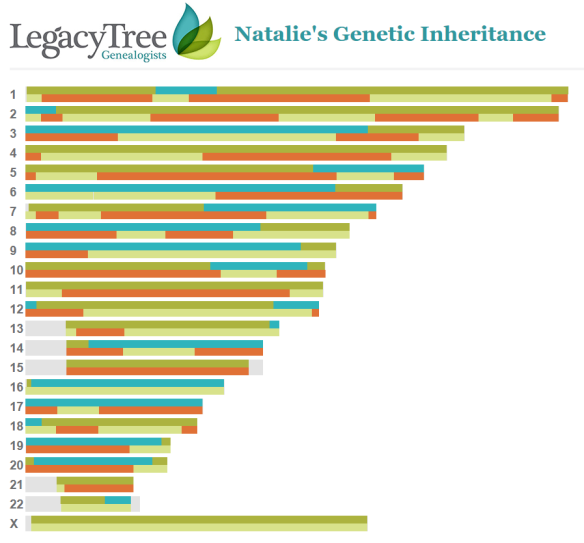 legacy-tree-grandparent-inheritance-chart